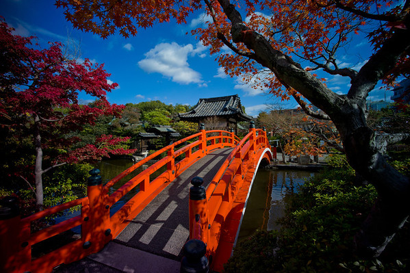 Kyoto at heart