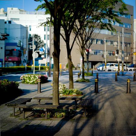 Yokosuka, near my flat